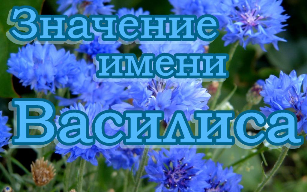 Значение имени Василиса - описание, происхождение и характеристика имени Василиса
